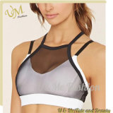 High Impact Top Ladies Sexy Tight Fitness Running Gym Yoga Wear
