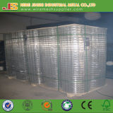 2-1/2 Inch Galvanized Welded Mesh Made in China