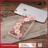Real Dried Pressed Colorful Flowers Phone Case for iPhone 7