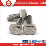 Stainless Steel (304, 316) T Bolt