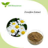 ISO SGS Tanacetum Parthenium Feverfew Herb Parthenolide and Tanetin Extract