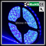 Best Quality 5630 600 SMD RGB LED Strip for Wholesale