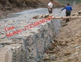 FOB15.8$/Set PVC Gabion Basket / Hot Dipped Galvanized Gabion Basket (XM-5)