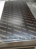 Film Faced Plywood CE Carb Fsc Certiifed Quality