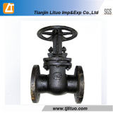 Tianjin Factory Cast Iron GOST Gate Valve