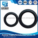NBR FKM Rubber Seal Tc Tb Auto Motorcycle Parts Oil Seal