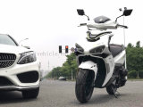 China Products/Suppliers. New Classic Gasoline Scooter A9