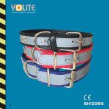 Pet Accessories Wholesale, Dog Collar Accessories, Pet Collar