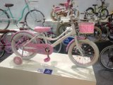 Toys 12 Inch Kids Bike with Assist Wheel (HC-CW-13)