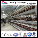 H Type Best Price Poultry Farm Egg Chicken Cage