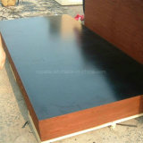 PLYWOOD1220*2440mm /Marine Plywood/Flim Faced Plywood /Shuttering/construction plywood