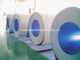 PPGI Galvanized Steel Coil Steel Products From Jocelyn