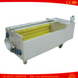 Bush Washer for Apple Carrot Ginger Commercial Vegetable Washer