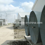 Hot Sale Prefabricated Poultry Farm and Poultry House