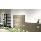 Reliable and Cheap Steel Cabinet Office Furniture with Stable Quality