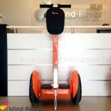 Wind Rover Cheap Self Balancing 2 Wheel Electric Vehicle