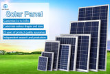 Poly Solar Module From 250W to 270W