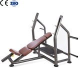 Fitness Body Building Olympic Incline Bench From Expert Factory
