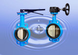 Cast Steel and Cast Iron/Ductile Iron Butterfly Valves