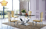 Hot Sale 2016 Dining Sets Sj806 and Chair Cy213z