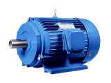 Hot Sale Three Phase Electric Motor with ISO System Certificates