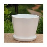 Printing White Painted Plastic Flowerpot for Home Garden Office Decoration