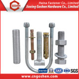 China Supplier Auto Fastener Stainless Steel Non-Standard /Customized Bolt