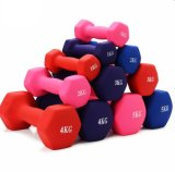 High Quality Free Weight Vinyl Dumbbell Equipment