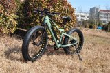 Easy Riding 48V 500W Electric Mountain Bike