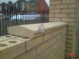 Natural White / Beige Sandstone Honed Coping Stone for Wall and Swimming Pool