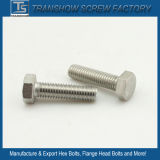 3/8-16X2 Inch 18-8 Stainless Steel Hexagon Bolts