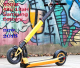 Foldable Fat Wheel Tire Harley Electric Scooter City Coco Citycoco