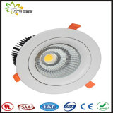 COB LED 30W Downlight SAA Approval Australia Standard, LED Down Light, LED Spot Down Light