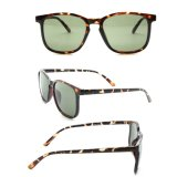 Cheap Wholesale Private Label Italy Design Ce Sunglasses Promotion