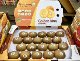 Premium I-Sweet Gold Kiwifruit for Export
