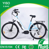 Hot Sale Green City Electric Motorcycle with Chinese Cheap E Bike for Sale