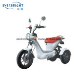 Smart Three Wheel Electric Scooter with High Climbing Performance