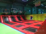 Indoor Gymnastic Trampoline Park with Basketball Game