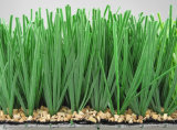 Artificial Turf for Football Field Non-Infill Grass (Y60)