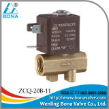 220VAC Leakage Detect Machine Brass Solenoid Valve (ZCQ-20B-11)