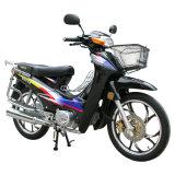 Jincheng Motorcycle Model Jc110-2 Cub