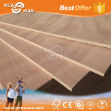 Commercial Plywood Birch Pine Okoume Bintangor Plywood Marine Grade Packing Plywood Competitive Prices
