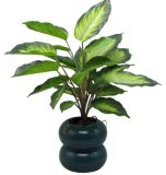 Gp-210502 Real Touch Air Plant Plastic Plat Artificial Plants with Pot Green Plants