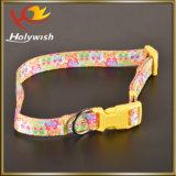 Wholesale Adjustable Retractable Nylon Dog Leash with Print Logo
