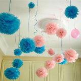 Hanging Flower Balls Wedding Bridal Shower Party Decoration Tissue Paper Pompom