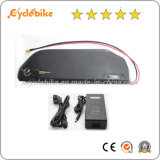 Big Capacity 52V 17.5ah Samsung Cell Li-ion Battery for Electric Vehicle