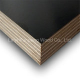 Marine Grade Waterproof Film Faced Plywood for Construction and Building