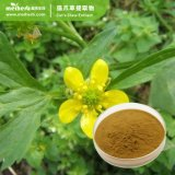 Factory Wholesale Price Natural Plant Cat's Claw Extract Powder Hapagoside