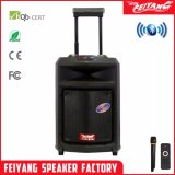 Feiyang New Top Side Amplier Outdoors Powerful Trolley Bluetooth Speaker Fy10-01 10 Inch