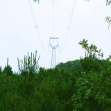 220 Kv Owl Type Angle Iron Tower